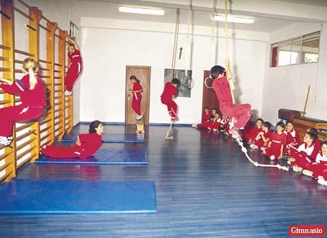 Instalaciones educativas y deportivas del colegio paidos for Gimnasio denia