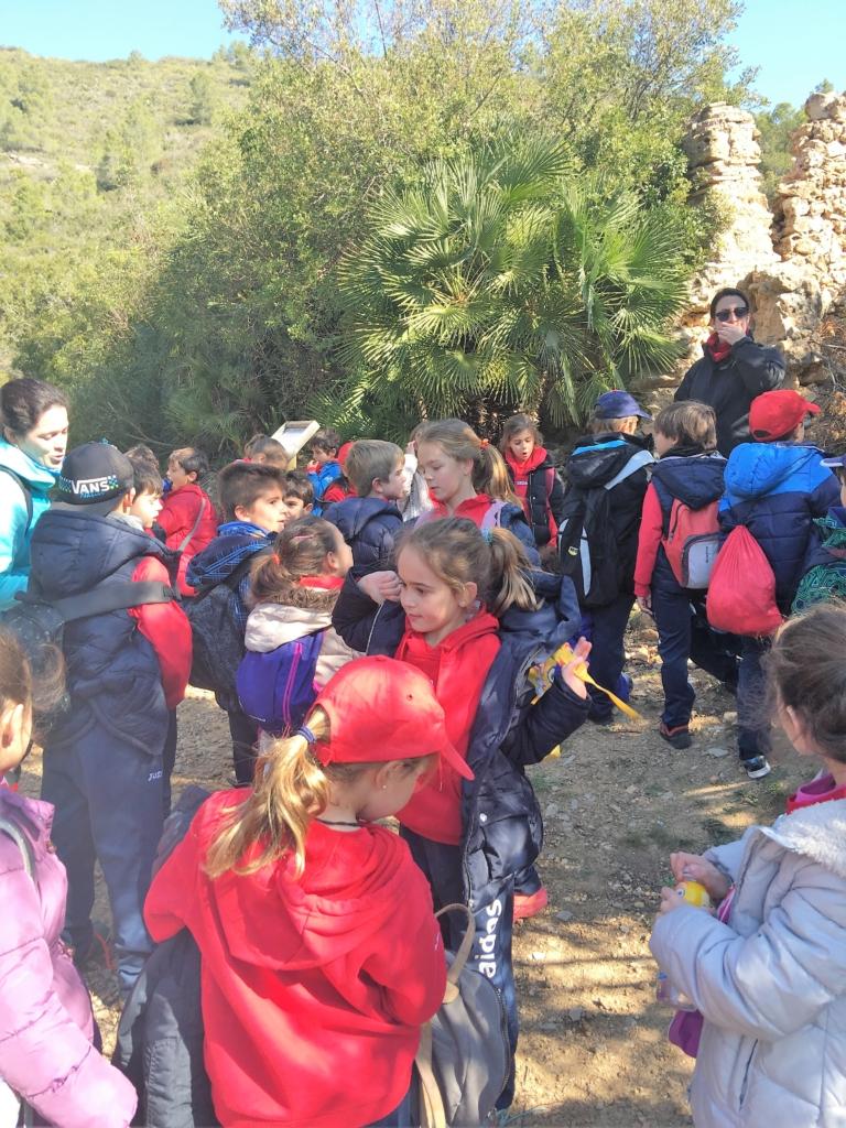 Excursión primaria colegio Paidos Denia